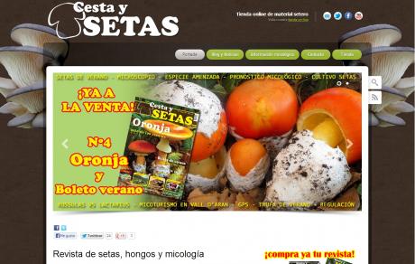 CestaySetas.com